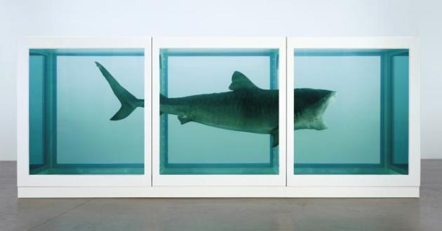 OBRA DE ARTE DA SEMANA: 'A Impossibilidade Física da Morte na Mente de Alguém Vivo', de Damien Hirst
